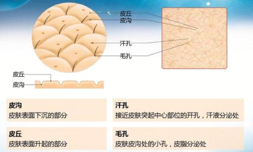 作为一个女性必须了解的肌肤问题小知识。。